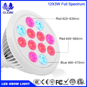 Indoor Grow Lights LED 10W 12W 18W 24W 36W LED Bulb Light pictures & photos