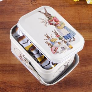 Lovely Gift Tins with Handle (FV-050855) pictures & photos