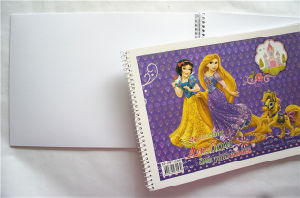 Wholesale Plastic Spiral Notebook Sketchbook pictures & photos