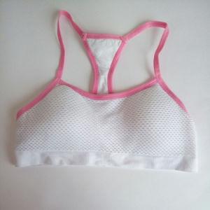 Plus Size Hot Comfortable Ladies Fitness Bra Sets Wholesale