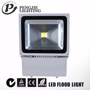 100W IP65 LED Floodlight with CE RoHS (PJ1080) pictures & photos