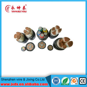 XLPE Copper Insulated Power Overhead Electrical/Electric Wire Cable pictures & photos