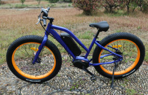 Fat Tire Electric Mountain Bicycle From China pictures & photos