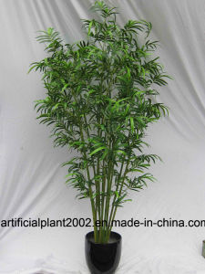 Factory Wholesale Fake Bamboo Trees Hx010501 for Indoor Decoration pictures & photos