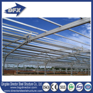 China Steel Construction Poultry Farm with Design pictures & photos