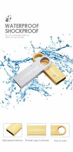 Silver Golden Pen Drive USB Flash Disk Pendrive with Logo pictures & photos