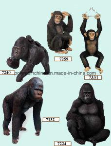 Fiber Glass Gorilla Decoration pictures & photos