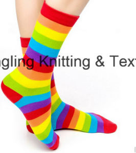 Bright Color Rainbow Strips Ove The Calf Socks pictures & photos