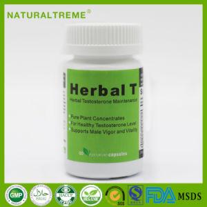 Magic Herbal T Eurycoma Longifolia Jack Capsule pictures & photos