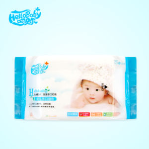 10 PCS High Quality Mini Pack Sensitive Baby Wet Wipe pictures & photos