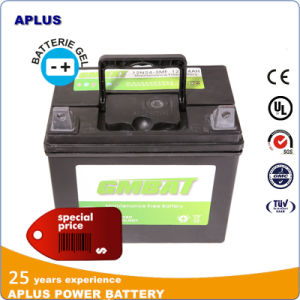 12n24-3 12V24ah Mf Lead Acid Battery for Lawn Tractors pictures & photos