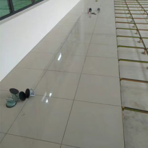 Ceramic Cover Steel Cementitious Raised Floor Panel pictures & photos