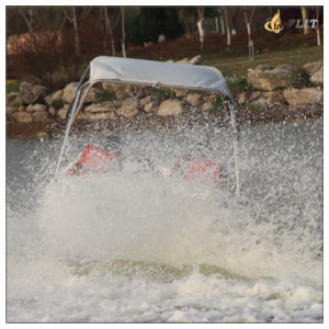 Ce Approved 16FT Jetboat USA Popular pictures & photos