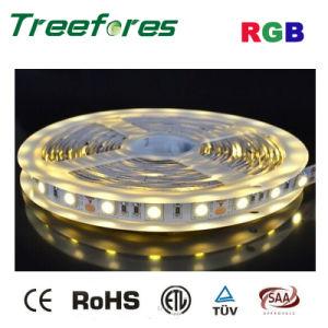48LED 5050 RGB LED Strip Lighting IP65 DC 12V 24V pictures & photos
