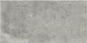Building Material Porcelain Tiles Floor Tile 600*1200mm Anti-Slip Rustic Tile (LNC6012112M)