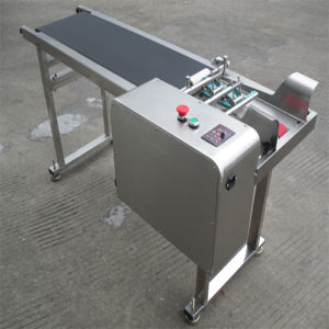 Small Cosmetic Bottle Chain Conveyor for Filling Machine/Labeling pictures & photos