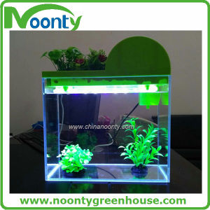 Glass Aquarium Fish Tank / Glass Aquarium Tank pictures & photos