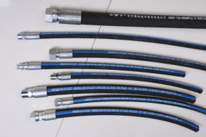 High Pressure Wire Braided Hose 1sc/2sc 1sn/2sn R16/R17 Wire Braid Hose Assembly pictures & photos