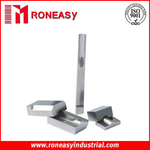 Stamping Die Tooling Spare Parts (Model: RY-SDT023)