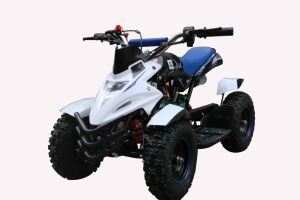 New Products 49cc 2 Stroke Kids ATV for Hot Sale pictures & photos