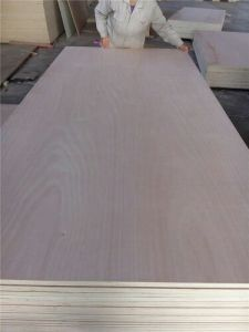 Marine Plywood, Commercial Plywood, Veneer Plywood, Bintangor Plywood 4′x′x18mm pictures & photos