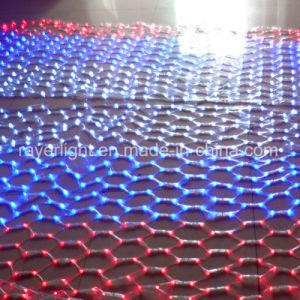 LED Twinkle Scanning Net Light LED Decoration Light Factory pictures & photos