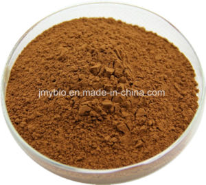 100% Natural Sweetgum Fruit Extract, Sweetgum Fruit P. E. 4: 1~20: 1 pictures & photos