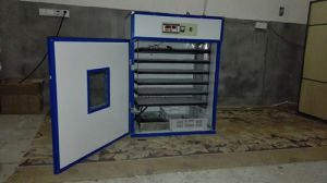 Hhd Hot Selling Automatic Chicken Egg Incubator for Sale (YZITE-10) pictures & photos