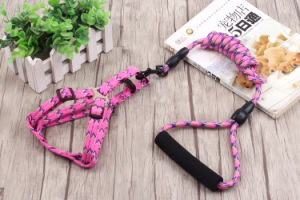 Pet Products Supply Dog Comfortable Leash (L002) pictures & photos