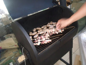 BBQ Grill, Charcoal BBQ (SHJ-KL07E) pictures & photos