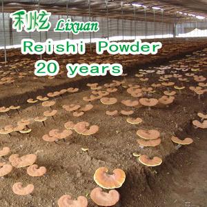 Reishi Extract Powder