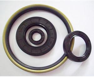 Oil Seal (O ring seal)