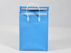 Wholesale Eco-Friendly Foods Cooler Bag (MECO459) pictures & photos
