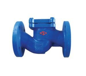 DIN Cast Iron Lift Type Check Valve  (H41H-PN16-DN15-DN200) pictures & photos