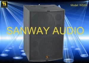 WS2A Compact Dual-Driver Subwoofer, PRO Audio PA Speakers Woofer pictures & photos