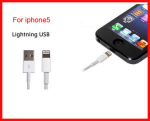 Original 8 Pin USB Charger Cables for iPhone6s pictures & photos