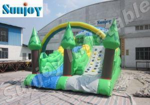 2010 Inflatable Jungle Theme Slide (SL051)