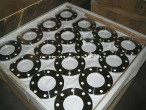 DIN2576 Pn10 Forged Stainless Steel Flanges pictures & photos