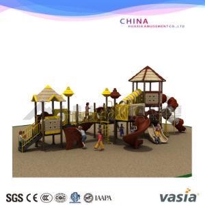Vasia Nature Seriesattractive Outdoor Playground Equipment for Children (VS2-3081A) pictures & photos