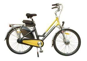 Trekking Style Eletric Bicycle (TDF-307Z)