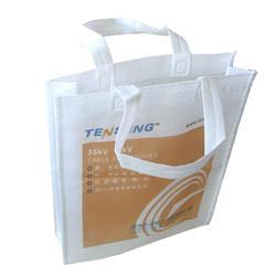 Nonwoven Bag (2206) pictures & photos