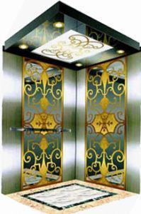 Residential Elevator (Machine room Elevator) pictures & photos