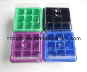 Seed Tray & Lid (DQ-G01) pictures & photos