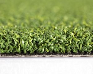 Artificial Grass, Synthetic Turf, Golf(Putting Green, Golf for Training. pictures & photos