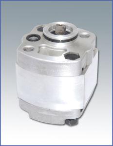 Hydraulic Pump (CBKS)
