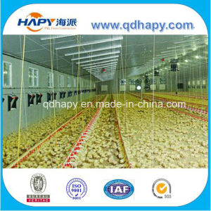 Low Cost Automatic Poultry Control Shed Equipment in Steel House pictures & photos