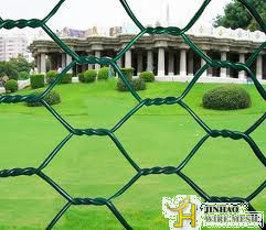 PVC Coated Hexagonal Wire Mesh (JH-015)