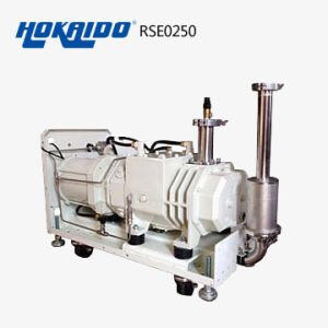 Dry Screw Vacuum Pump for Vacuum Industrial (RSE250)