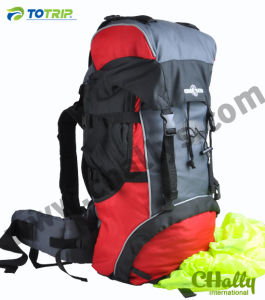 40L Outdoor Sports Hiking Bag