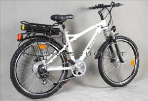 Alloy Electric City Bike (YS-CEB-035)